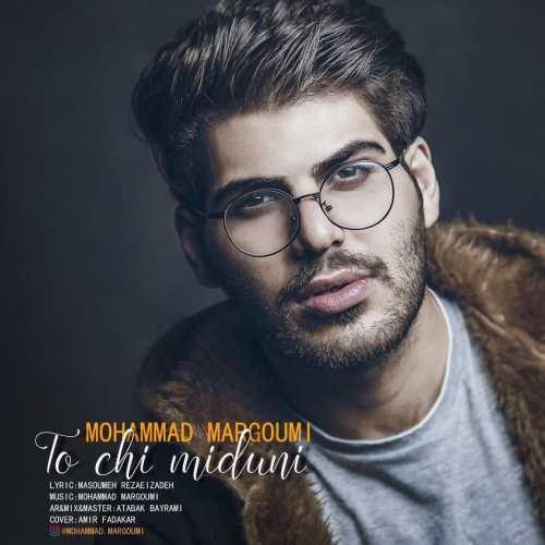 Mohammad Margoumi To Chi Miduni - دانلود آهنگ جدید محمد مرقومی بنام تو چی میدونی