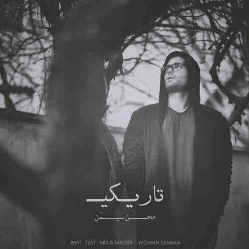 Mohsen Seaman - دانلود آهنگ جدید محسن سیمن بنام تاریکی